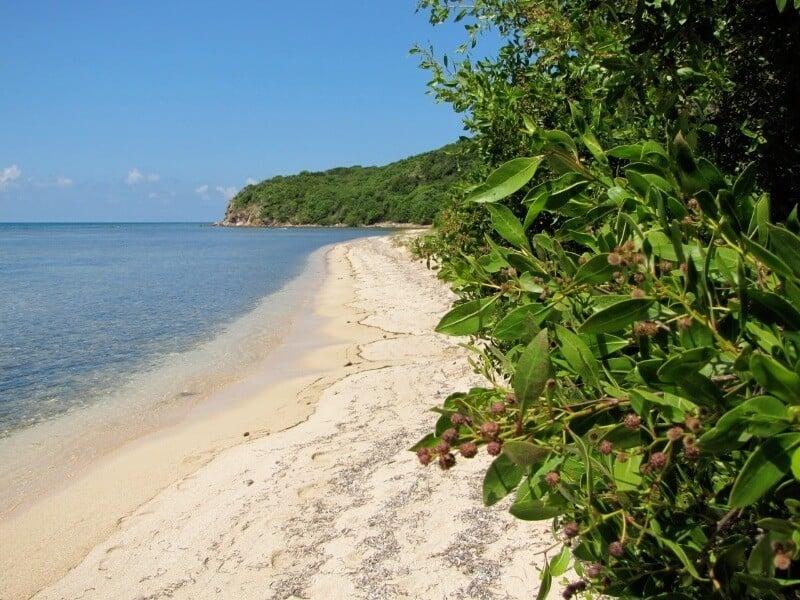 Reef-Bay