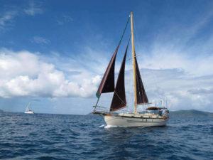 Salty Dog Day Sails