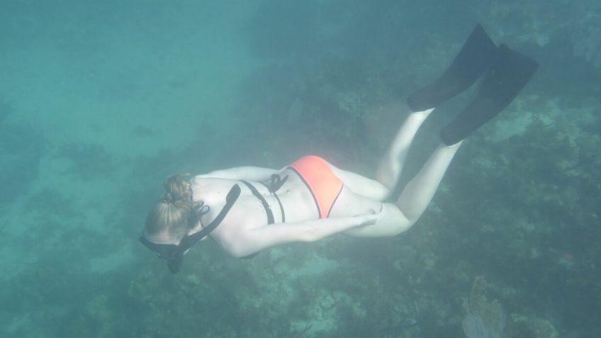 Single Snorkler