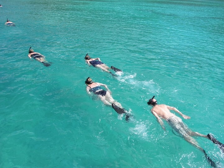 Snorkelers using reef safe sunscreen