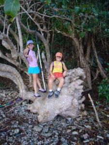 Reef Bay Trail Hiking