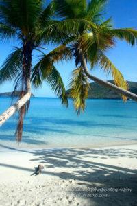 Maho Bay 2