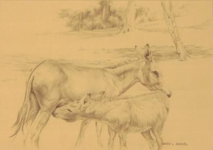 Donkey-print-Karen-Samuels