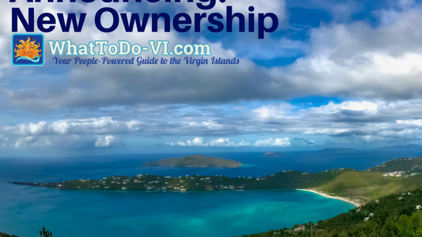 New Ownership of What to Do VI
