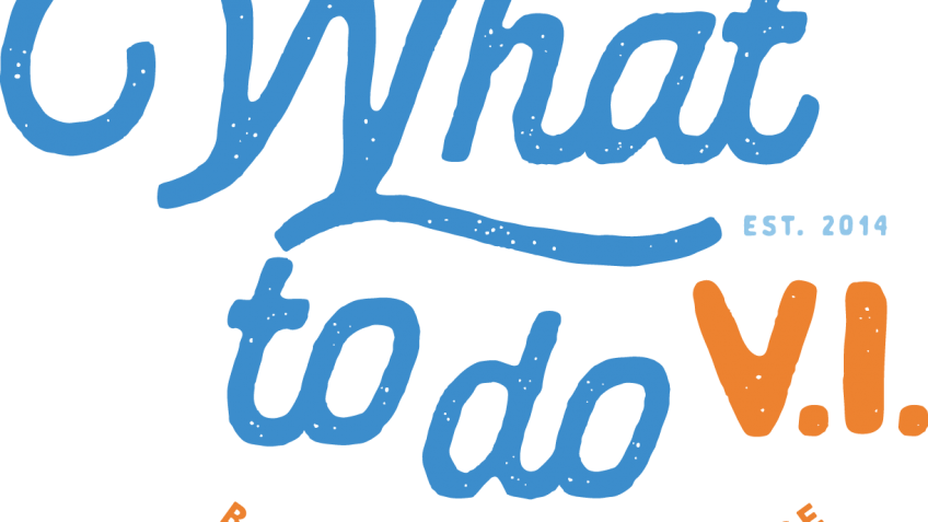What To Do VI Logo