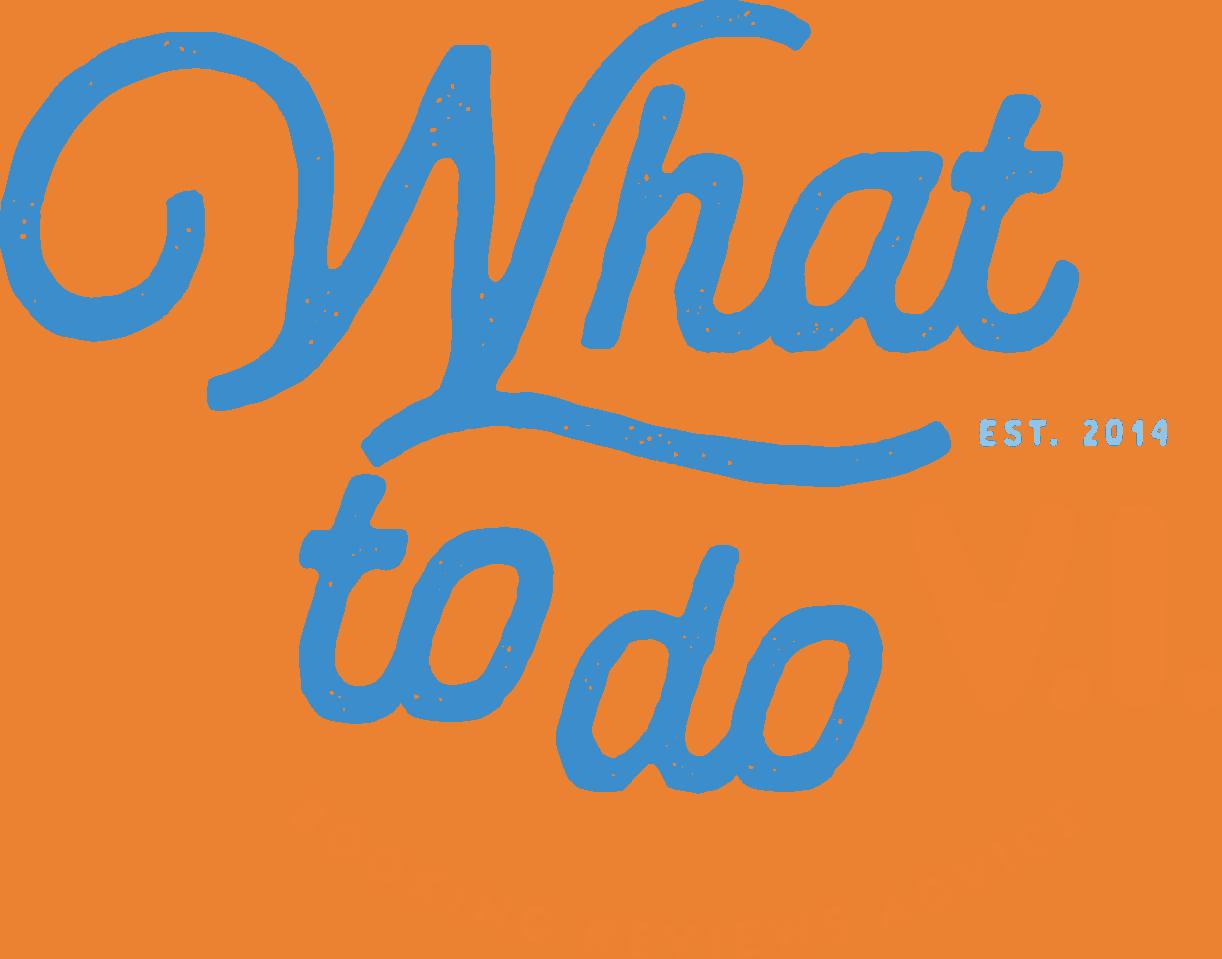 WTDVI Logo FINAL