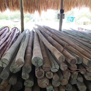 The Easterly St. Thomas Tulum Sourced Wood